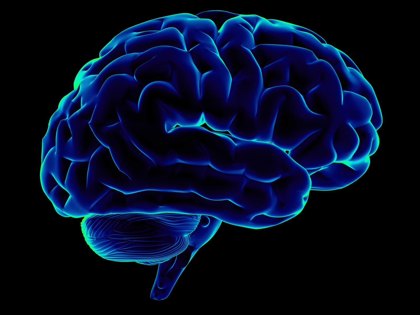Forskning om hjernerystelse