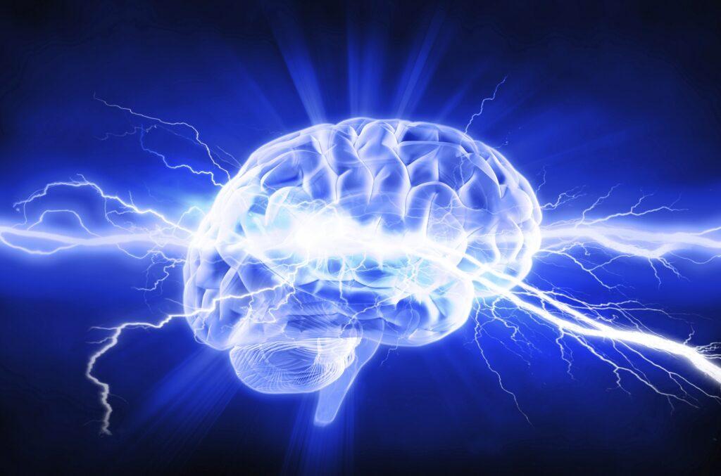 Viden om hjernerystelse
